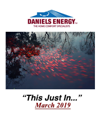 #53. Daniels Energy - This Just In - March 2019
