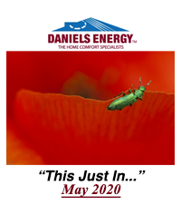 #67. Daniels Energy - This Just In - May 2020