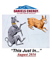 #22. Daniels Energy - This Just In -August 2016